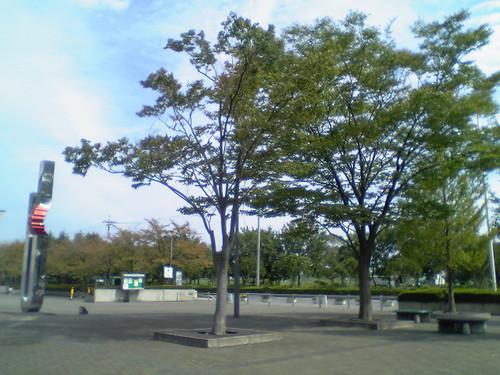 Dvc00016