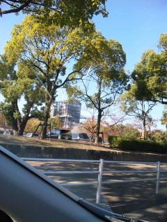 姫路城…秋