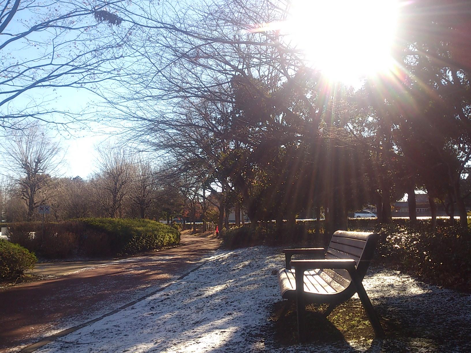 雪が降ったんだ・・